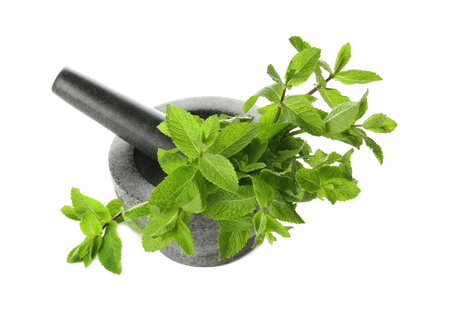Mortar with fresh mint and pestle on white background