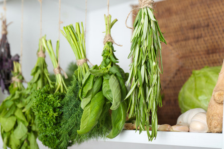 Bunches of different herbs in kitchen Archivio Fotografico