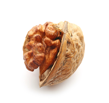 Tasty walnuts on white background
