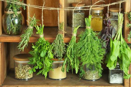 Fresh herbs hanging on string against wooden shelves