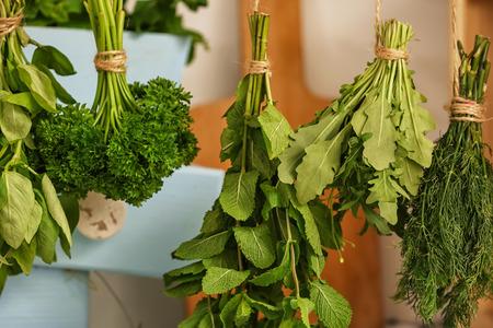 Fresh herbs hanging on strings indoors Imagens