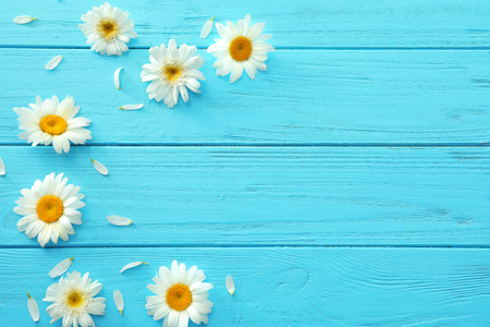 Beautiful chamomile flowers on wooden background Stock Photo