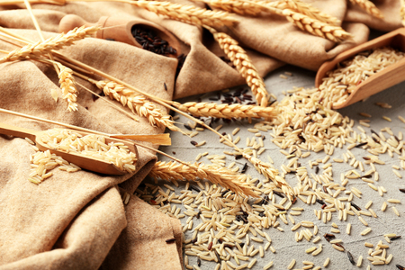 Unpolished rice and spikelets on light background