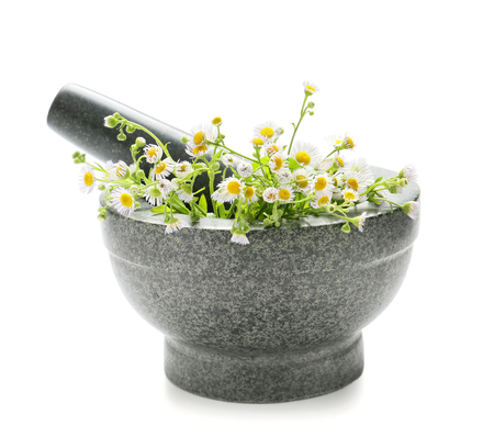 Chamomile flowers in mortar on white background 免版税图像