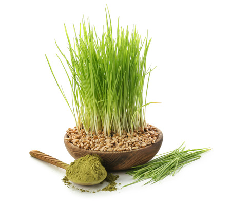 Fresh wheat grass with powder and seeds on white background