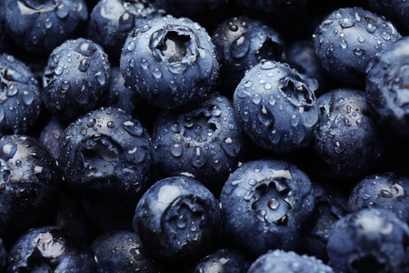 Ripe blueberries, closeup