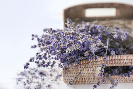 Wicker tray with beautiful lavender flowers on white background, closeup Imagens