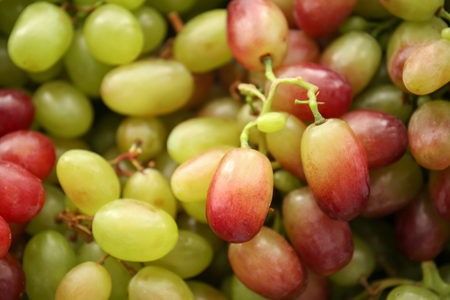 Fresh ripe grapes, closeup