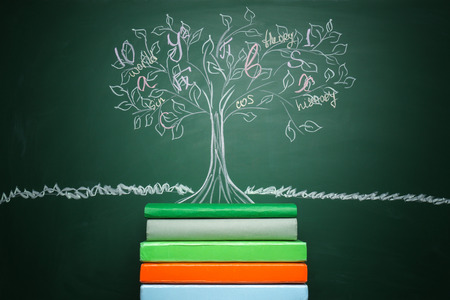 Stack of books and drawn tree on chalkboard Stock Photo