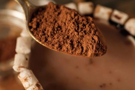 Spoon with cocoa powder, closeup Reklamní fotografie - 118497528