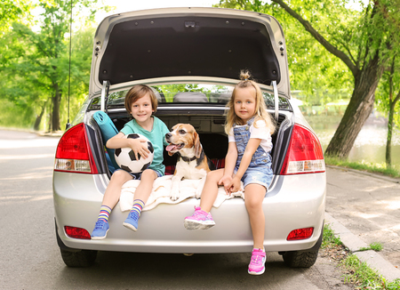 Cute children with dog sitting in car trunk