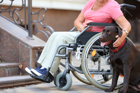 Senior woman in wheelchair and her dog near stairs outdoors Banque d'images