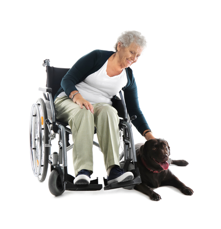 Senior woman in wheelchair with her dog on white background