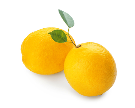 Whole ripe lemons on white background 免版税图像