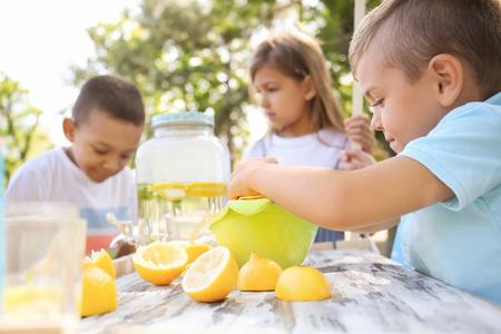 Little boy preparing fresh lemonade in park Stockfoto