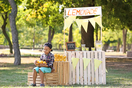 Little African-American boy holding bowl with ripe lemons near stand in park Reklamní fotografie