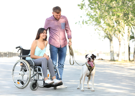 Young woman in wheelchair with her husband and service dog outdoors 스톡 콘텐츠
