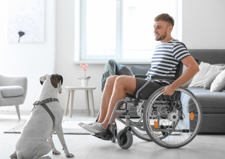 Young man in wheelchair with service dog at home