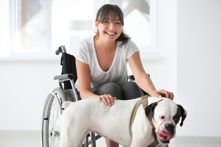 Young woman in wheelchair with service dog indoors