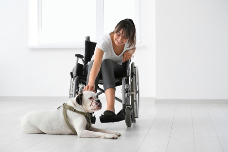 Young woman in wheelchair with service dog indoors Imagens