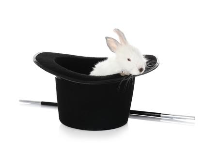 Kapelusz maga z uroczym królikiem na białym tle