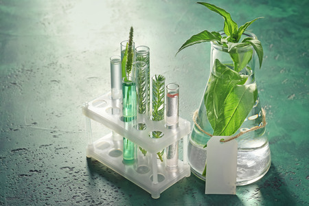 Test tubes and flask with plants on color table Archivio Fotografico