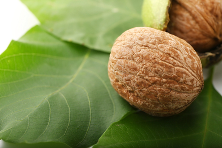 Unpeeled walnut with green leaves, closeup Banco de Imagens