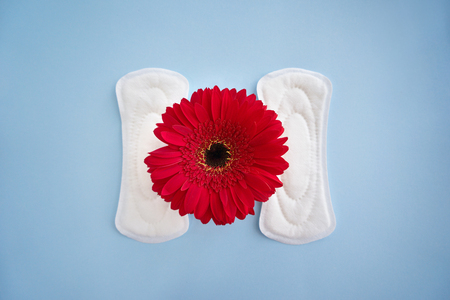 Menstrual pads with red flower on color background
