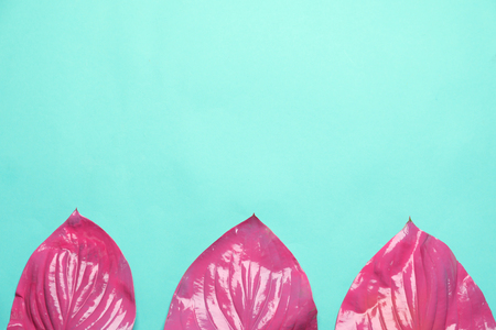 Pink tropical leaves on color background Stock Photo