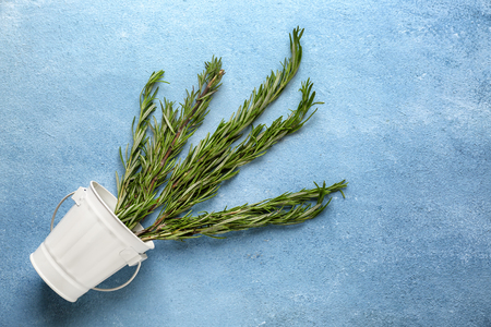 Bucket with fresh aromatic rosemary on color background 스톡 콘텐츠