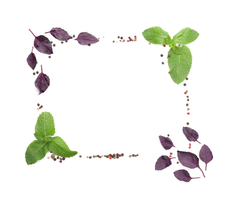 Frame made of fresh aromatic herbs on white background
