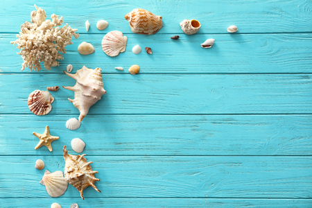 Different sea shells on color wooden background Stock Photo