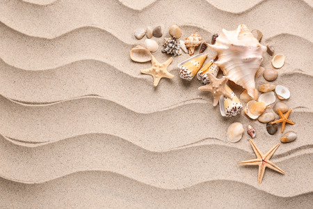 Different sea shells and starfishes on sand