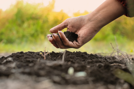 Woman holding black soil outdoors