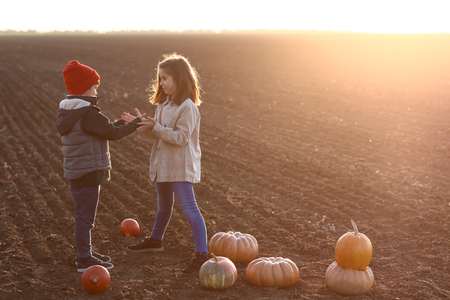 Cute little children with pumpkins in autumn field