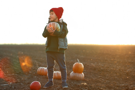 Cute little boy with pumpkins in autumn field