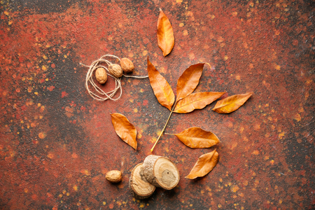 Beautiful autumn leaves with walnuts and stumps on color background Stok Fotoğraf