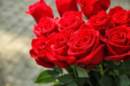 Strauß schöner Rosen Standard-Bild