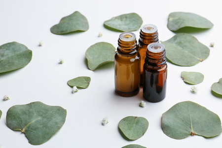 Bottles of eucalyptus essential oil and leaves on white background Imagens