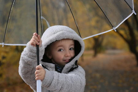 Cute little boy with transparent umbrella in autumn park Фото со стока