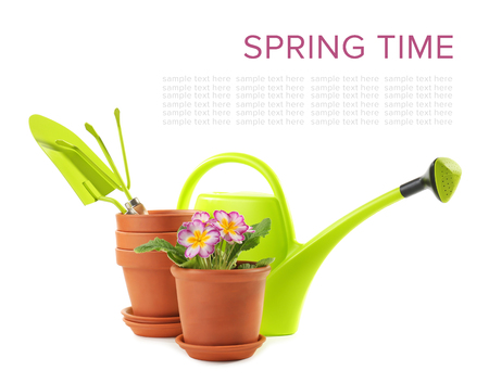 Flowerpots with plant and gardening equipment on white background
