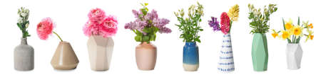 Different vases with beautiful flowers on white background Archivio Fotografico