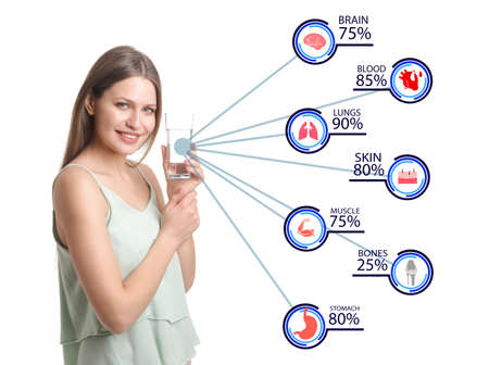 Young woman and percentages of water in different internal organs and tissues on white background