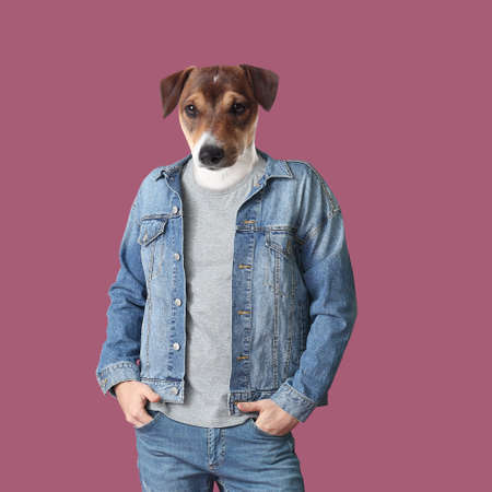 Stylish man with head of dog on color background