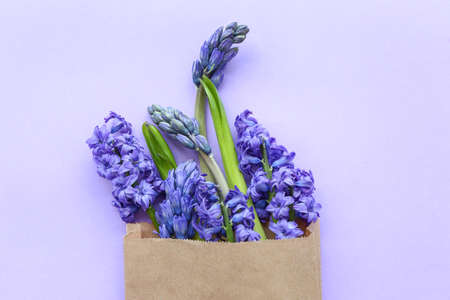 Bag with beautiful hyacinth flowers on color background