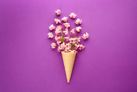 Waffle cone and beautiful hyacinth flowers on color background