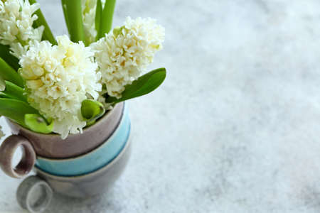 Cups with beautiful hyacinth flowers on table Stok Fotoğraf - 163658519