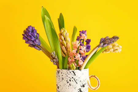 Beautiful hyacinth flowers in cup on color background Stok Fotoğraf