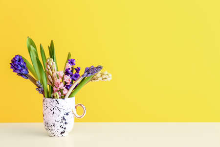 Beautiful hyacinth flowers in cup on table against color background Stok Fotoğraf