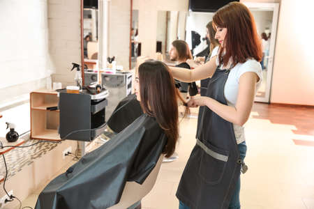 Female hairdresser working with client in salon